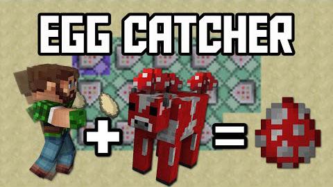 Egg-Catcher-Command-Block.jpg